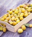 Prunes jaunes fraîches Fruits mûrs dans une boîte en bois sur le fond approximatif de conseils photographie stock