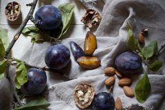 Prunes with leafs, walnuts, almonds on rustic background Royalty Free Stock Photos