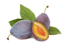 Prunes mûres avec les feuilles vertes (d'isolement) Photo stock