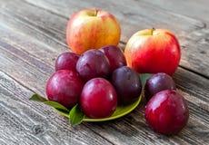 Prunes, nectarines et pommes mûres sur une table en bois Photographie stock libre de droits