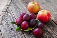 Prunes, nectarines et pommes mûres sur une table en bois Images stock