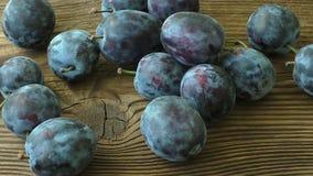 Prunes organiques fraîches de récolte d'automne clips vidéos