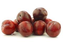Prunes rouges fraîches photo libre de droits