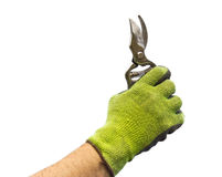 Pruning Clippers Stock Image