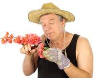 Pruning Gardener Royalty Free Stock Photos