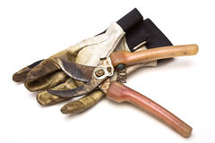 Pruning Kit. Pair of grubby gardening gloves & shears from low perspective isolated against white background Stock Images