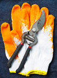 Pruning sheares and glove on jean Stock Photo