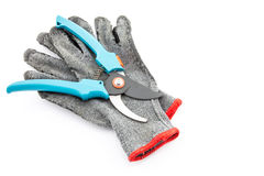 Pruning shears and gardening worn gloves Stock Image