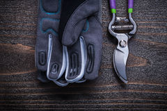 Pruning shears protective gloves on vintage wood board agricultu Royalty Free Stock Photography