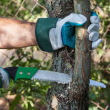 Pruning tree. Pruning fruit trees garden with a hacksaw Royalty Free Stock Photo