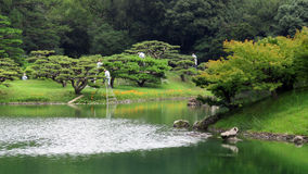 Pruning trees in Ritsurin Koen Garden Takamatsu Japan Royalty Free Stock Image