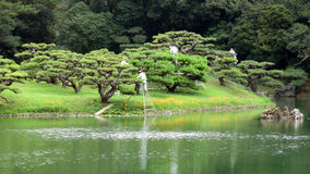Pruning trees in Ritsurin Koen Garden Takamatsu Japan Royalty Free Stock Photography