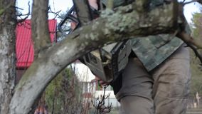 Pruning Trees and shrubs. A man with a chainsaw cuts the tree branches. The season of spring works. HD quality stock video
