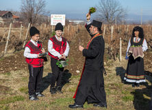 Pruning of the vineyards ritual in Bulgaria Stock Photos