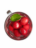 Prunus Cerasus cherry. Prunus plant kingdom Plantae. Cherry is a deciduous fruit trees in northern China after the relay China's first fruit ripening cherry Royalty Free Stock Photos
