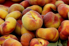 Prunus persica 'Donut', Donut peach, Flat peach Royalty Free Stock Images