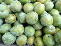 Prunus salicina 'Szmaragdowego Beaut' Japońska śliwka zdjęcia royalty free