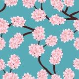 Prunus serrulata Outline - Cherry blossom, Sakura on Blue Background. Vector Illustration.  royalty free illustration