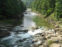 Prut flod, Yaremche Arkivfoto