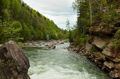 Prut-Fluss in Yaremche, Karpaten, Ukraine Lizenzfreies Stockfoto