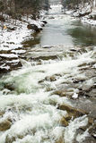 Prut river in Carpathians, Ukraine . Stock Photography