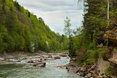 Prut River near fall Probiy in Yaremche, Carpathians, Ukraine Stock Photography