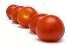 Pry tomato Stock Photography
