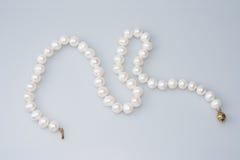 Prydd med pärlor pärlemorfärg halsband arkivbild