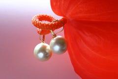 pryder med pärlor havssöder Arkivfoto