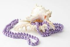pryder med pärlor havsskalet Royaltyfri Foto