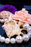 pryder med pärlor rovasken Arkivfoton