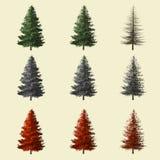 Prydlig tolkning för träd som 3d isoleras för landskapformgivare Royaltyfri Fotografi