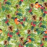 Prydliga trädfilialer, fåglar, kottar, mistel seamless bakgrundsjul vattenfärg Royaltyfri Foto