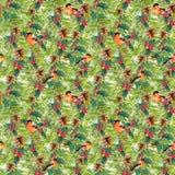 Prydliga trädfilialer, fåglar, kottar, mistel seamless bakgrundsjul vattenfärg Royaltyfri Fotografi