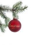 prydnad för 2011 jul royaltyfri fotografi
