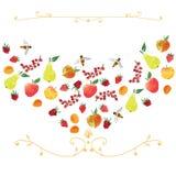 Prydnad som är baserad på frukter Royaltyfri Fotografi