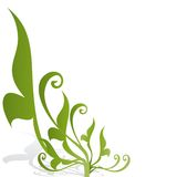prydnadvektor Royaltyfria Bilder