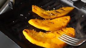 Prymka naciska paski na grill niecce zbiory wideo