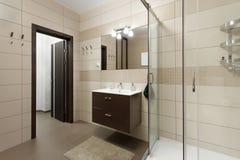 Prysznic i zlew blisko drzwi Fotografia Stock