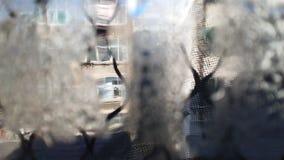 Prytt med pärlor exponeringsglas window3 royaltyfri bild