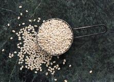 Prytt med pärlor korn Fotografering för Bildbyråer