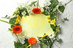 Prześcieradło koloru papier z pięknymi kwiatami na lekkim tle fotografia royalty free