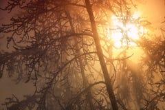 prześlijcie tego zwiększenia efektywnego lotu nieba, która jest słońce Fotografia Stock