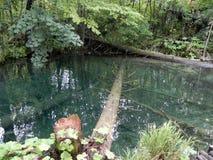 PLITVICE jezioro Obraz Stock