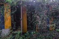 przebieralnie w lesie obrazy royalty free