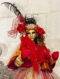 Przebrana osoba - Annecy Wenecki karnawał 2014 zdjęcia stock