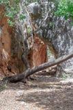 Przechodzi w górach blisko kasztelu Monfort w północnym Izrael zdjęcie stock