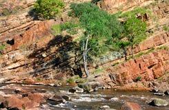 przechylająca formaci skała Obraz Stock