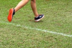 Przecinającego kraju biegacz krzyżuje metę obrazy royalty free