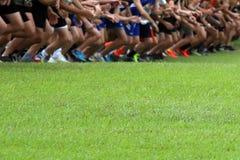 Przecinającego kraju biegacze przy zaczyna linią fotografia stock